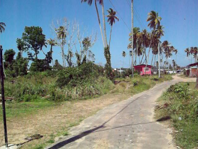 Caribbean Homes Trinidad Beach Lots In Icacos Cedros